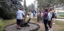 Комплексна навчальна практика студентів кафедри лісового та садово-паркового господарства